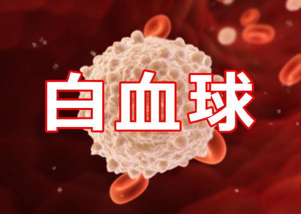 白血球数が多い時や少ない時に考えられる病気は何?!